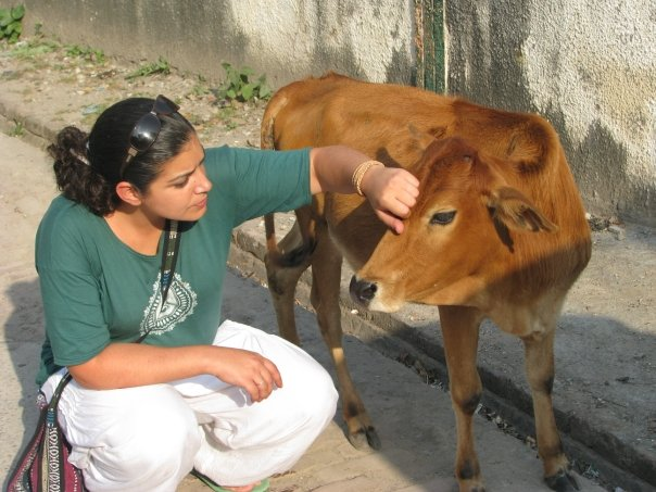 Me & my favorite cow. Taken in Rishikesh, India.