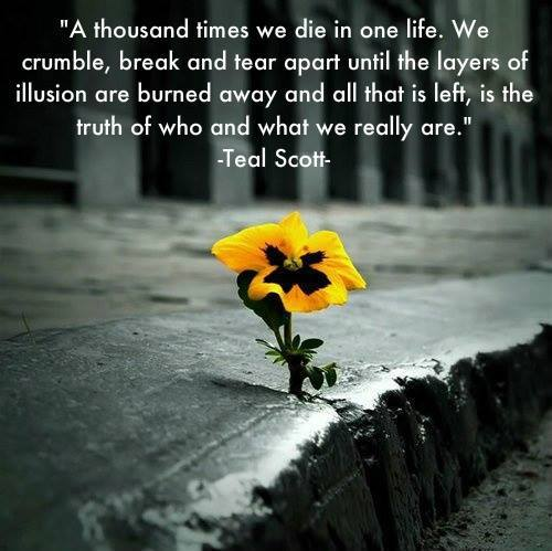 A thousand times we die in one life